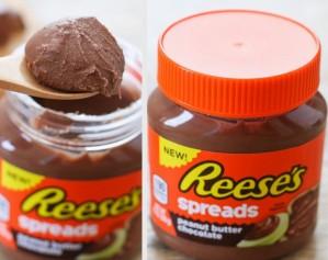 reeses pb spread mug cake edit-002
